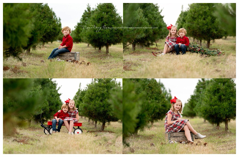 Austin Fall Family Portraits | Anderson Family