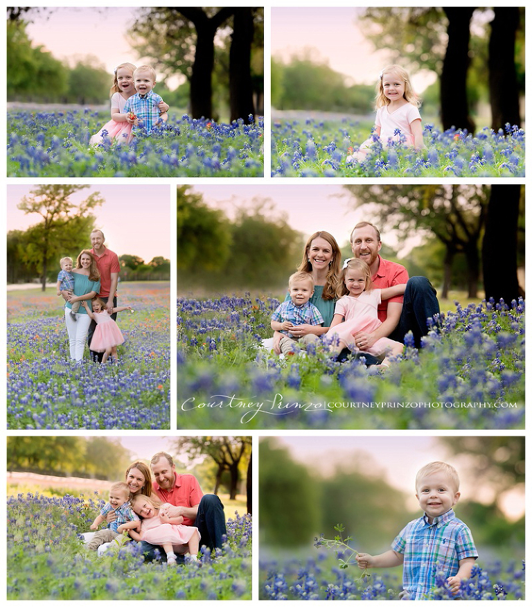 austin tx bluebonnet photographer